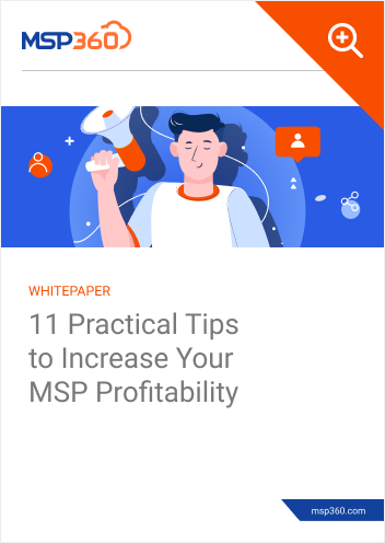 11 Practical Tips to Increase Your MSP Profitability preview 1.png.png-1