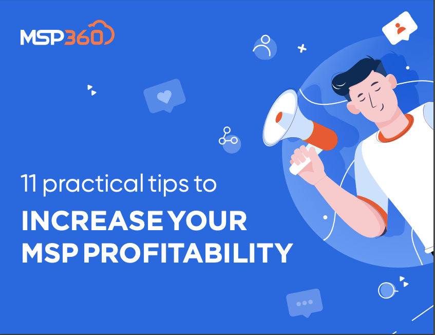 11 Practical Tips to Increase Your MSP Profitability preview 3