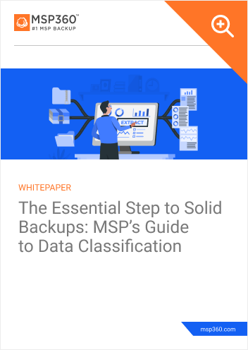Data Classification Guide preview 1