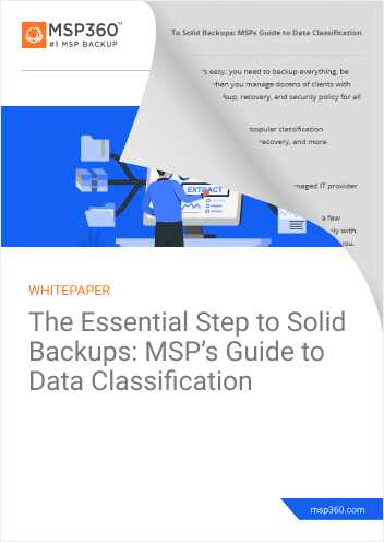Data Classification Guide preview 2