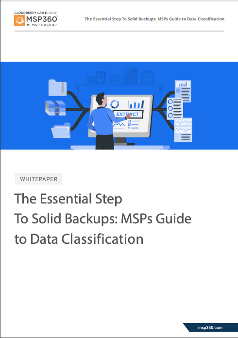 Data Classification Guide preview 3
