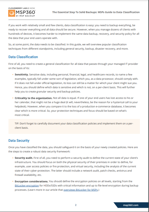 Data Classification Guide preview 4