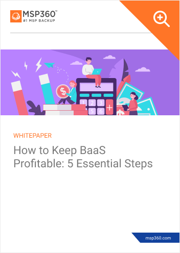 How to keep BaaS profitable preview 1