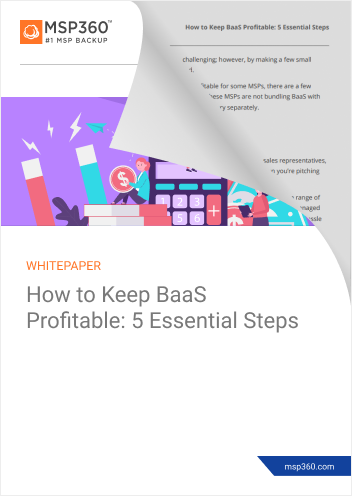 How to keep BaaS profitable preview 2 (1)