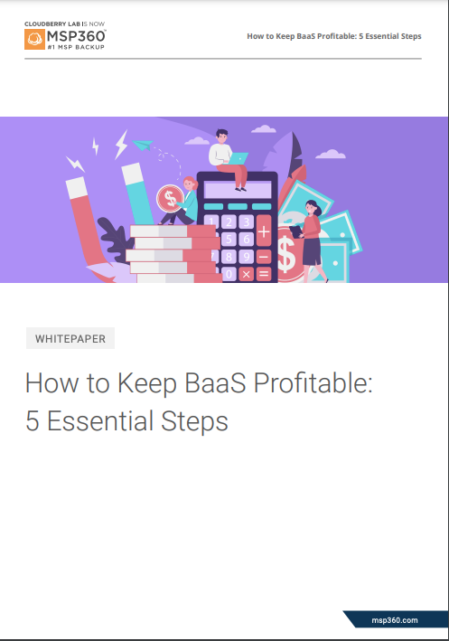 How to keep BaaS profitable preview 3