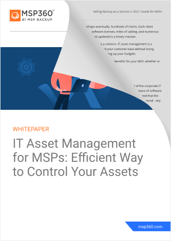 IT Asset Management for MSPs Efficient Way to Control Your Assets (1)