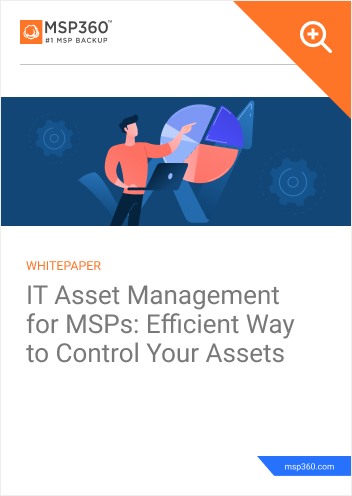 IT Asset Management for MSPs Efficient Way to Control Your Assets