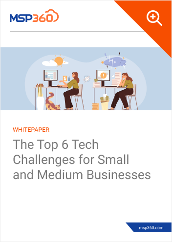 The Top 6 Tech Challenges for Small and Medium Businesses preview 1