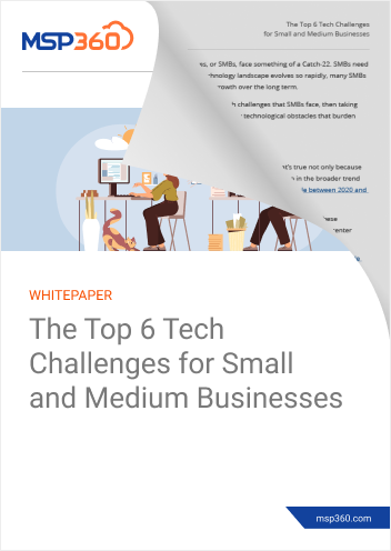 The Top 6 Tech Challenges for Small and Medium Businesses preview 2