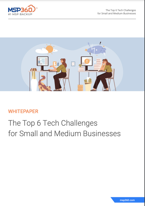 The Top 6 Tech Challenges for Small and Medium Businesses preview 3