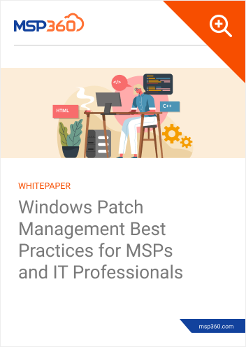 Windows Patch Management Best Practices for MSPs and IT Professionals preview 1