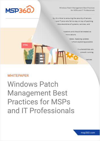 Windows Patch Management Best Practices for MSPs and IT Professionals preview 2