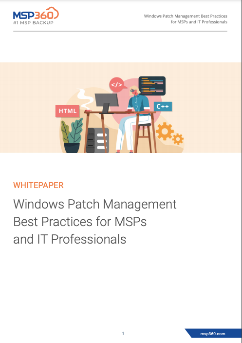 Windows Patch Management Best Practices for MSPs and IT Professionals preview 3