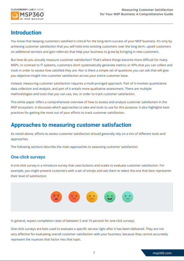 customer satisfaction preview 2